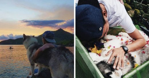 Cover Desgarrador momento en que un joven se despide de su amado perro