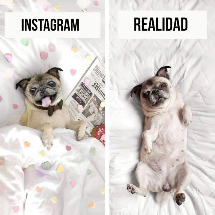 instagram vs. realidad