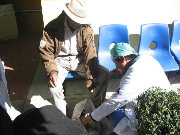 médicos salvan vida de un cachorro
