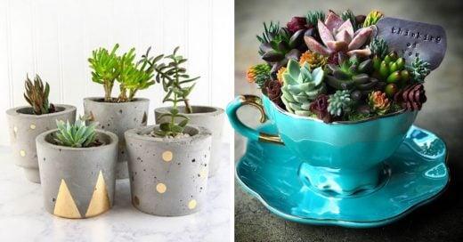 Cover ideas para decorar tus macetas
