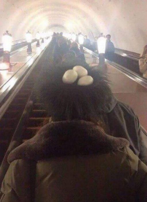 huevos en la cabeza