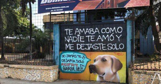 Cover Utilizan mensajes de desamor para invitar a adoptar perritos