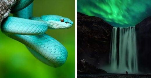 Cover Asombrosas fotos que demuestran el poder de la naturaleza