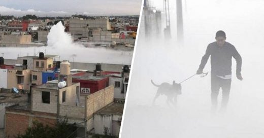 Cover Regresa a rescatar a su perro en medio de una nube de gas