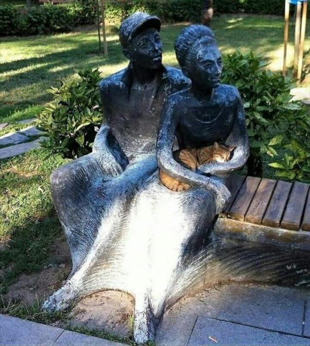 gatito en escultura