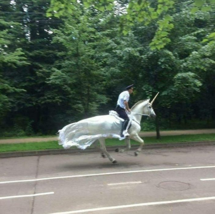 policía en unicornio