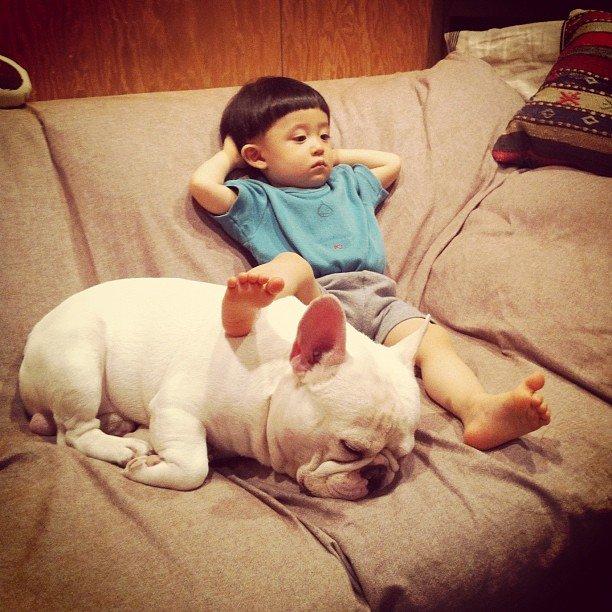 Animales que necesitan amor recreoviral.com