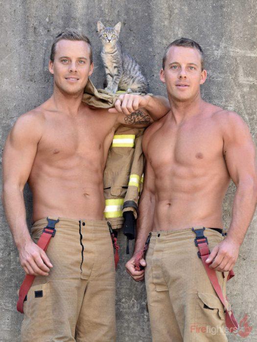 dos bomberos y un gato