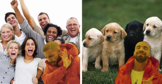 Cover Estudio confirma que amamos más a nuestras mascotas que a otras personas