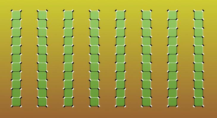 ilusión óptica bambús