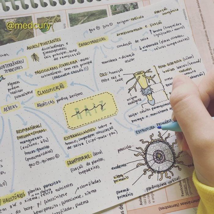 notas de plantas parásitas