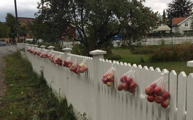 manzanas gratis para el vecindario