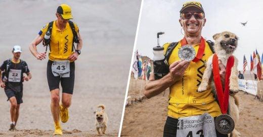 Cover *Perrita sin hogar se une a un corredor en un maratón y ahora son inseparables