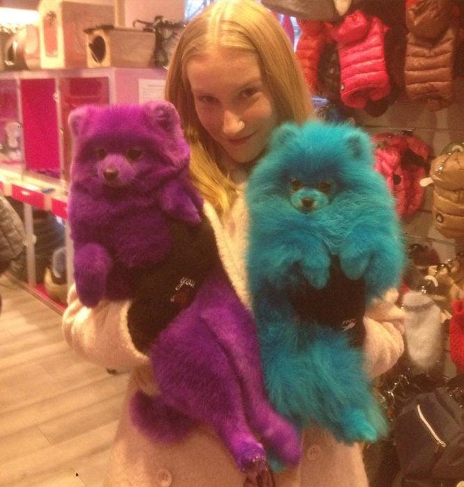 mujer sosteniendo perritos de colores