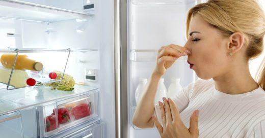 Cover Trucos para deshacerte de los malos olores de tu casa