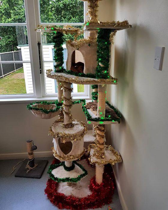 casa de navidad de gatos navideña
