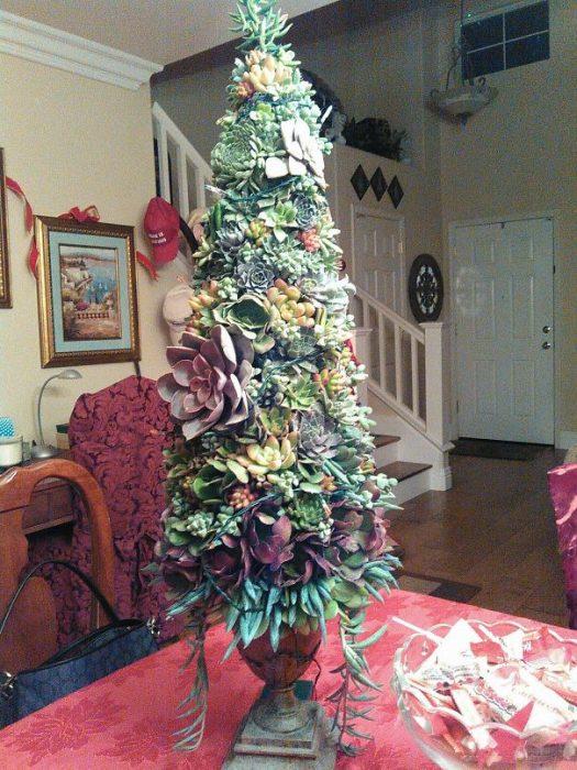 árbol de navidad de suculentas