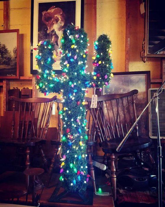 cactus navideño
