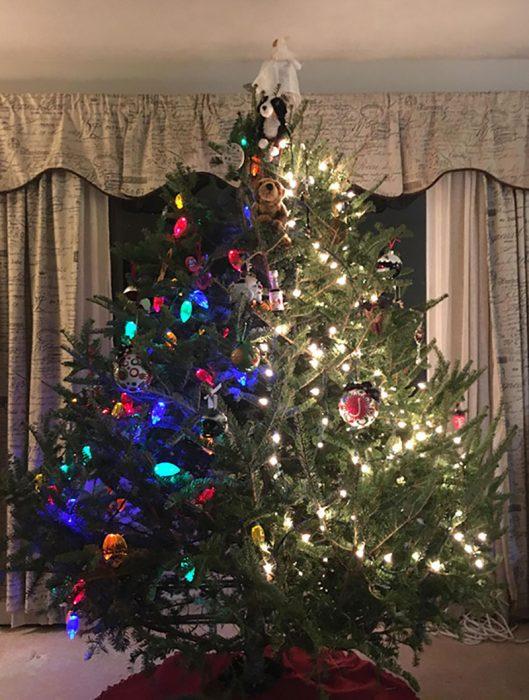 árbol de navidad con dos decoraciones