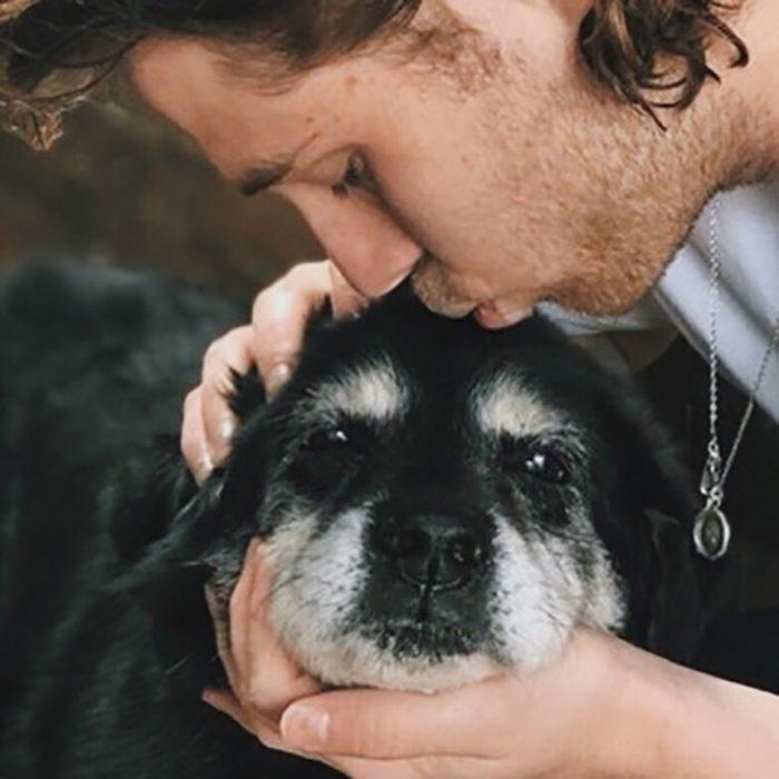 beso a perrito viejito