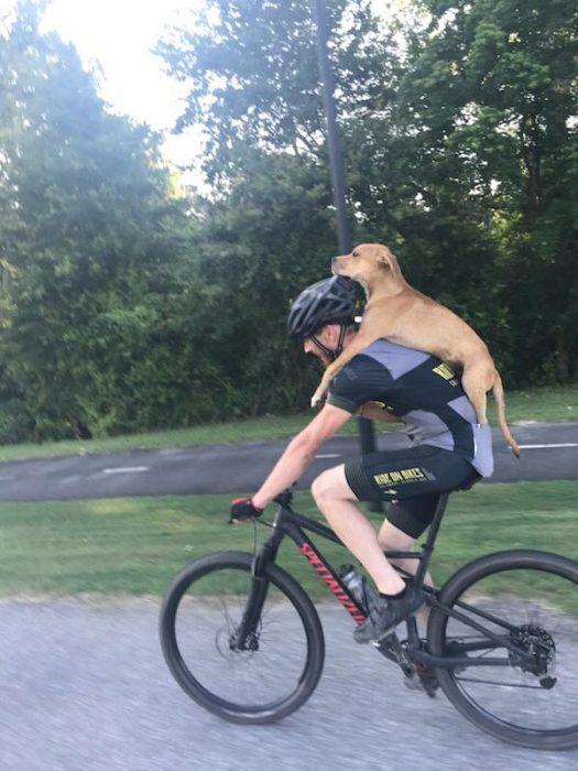 ciclista y perrito