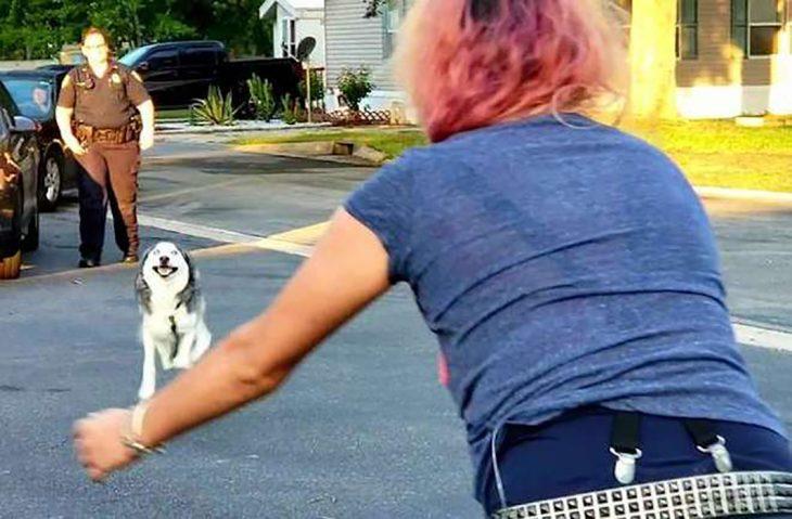 encuentro entre perro y dueña