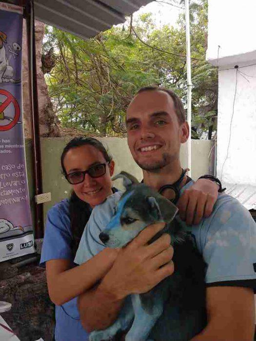 veterinario y perrita azul