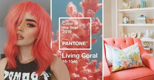 Color EL COLOR DEL AÑO LIVING CORAL