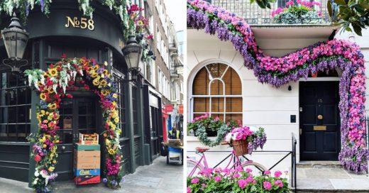 Cover Se hace famosa por fotografiar las puertas más hermosas de Londres