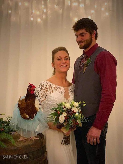 pareja y gallina