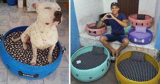 Cover Joven artesano transforma neumáticos viejos en camas para perros y gatos
