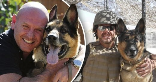 Cover Perro de guerra se reencuentra con su mejor amigo
