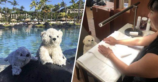 Cover Niño pierde su peluche favorito en hotel. Recibe fotos de él disfrutando de manicures y tomando sol
