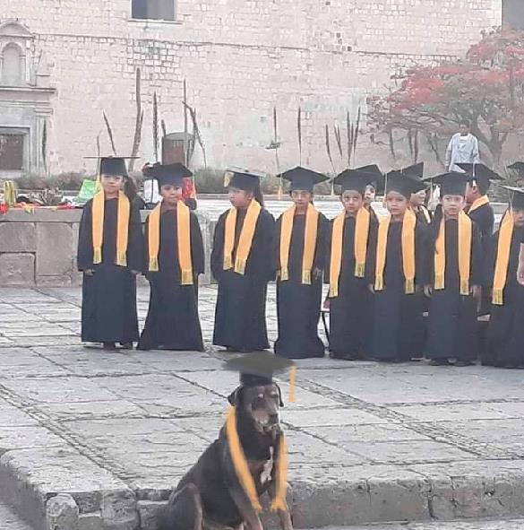 mazapan se gradua del kinder