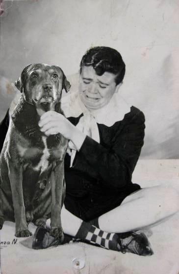 perro famoso chabelo