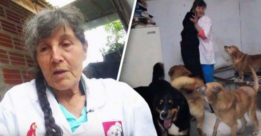 Cover Mujer renuncia a sus comodidades para cuidar de 400 animales