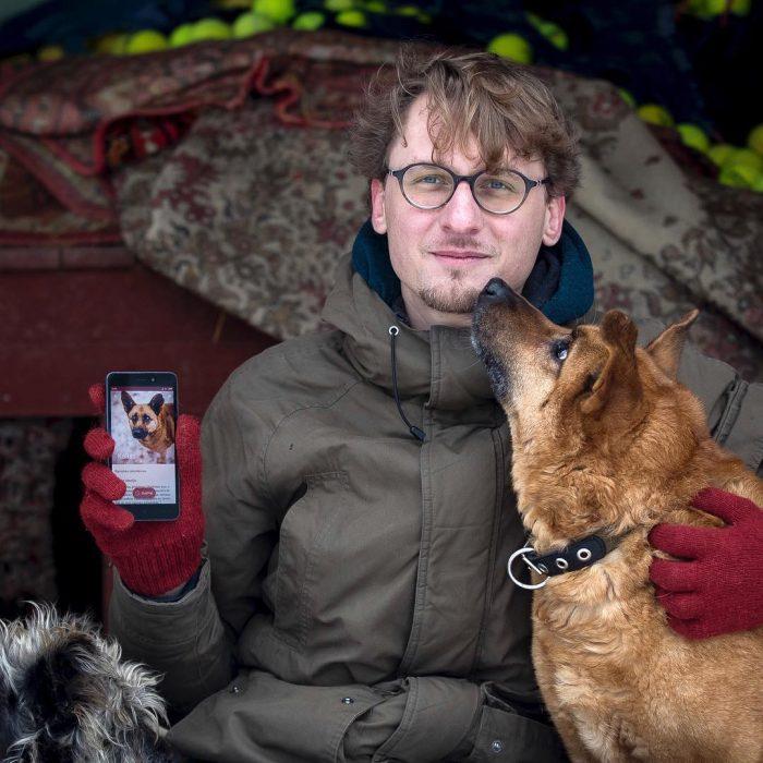 hombre y perros