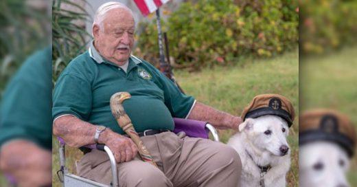 Cover Iban a dormir a este perro anciano hasta que un hombre de 93 años lo adoptó