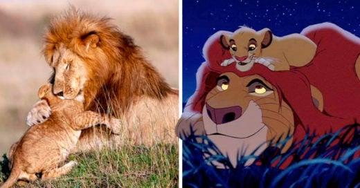 COVER Simba y Mufasa de la vida real