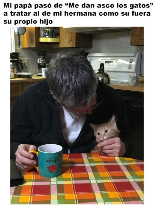 Papás que juran odiar a los gatos