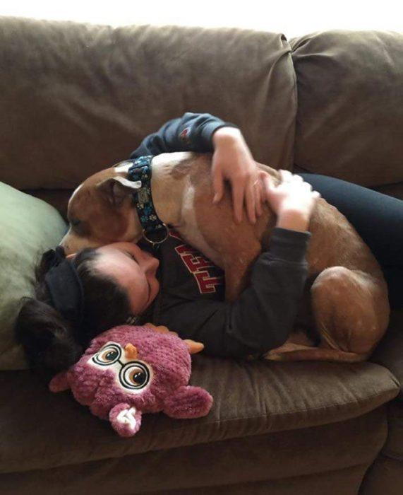 perrito-pitbull-adoptado-no-deja-de-abrazar-a-su-dueña