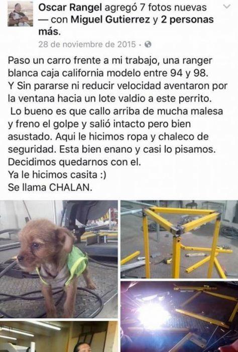 Adoptan a perrito en taller electrico recreoviral