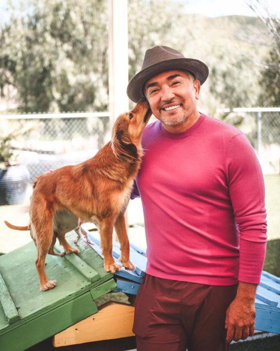 césar millán recomienda adoptar en lugar de comprar perro de raza