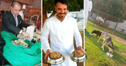 COVER Hotel de lujo alimenta a perros sin hogar con sobras de comida que llevan a refugios