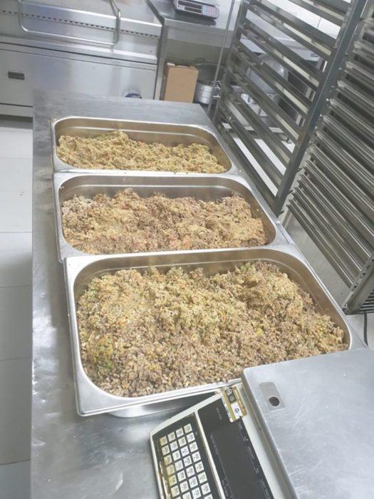 Restaurante da sobras de comida a perros callejeros recreoviral