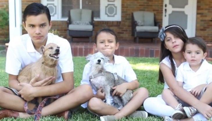 niños con dos perritos