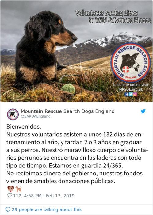 rescate en la montaña nevada perrito Recreo viral