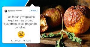 15 Tuits que muestran los problemas de adultos para los que nunca te prepararon