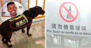 13 Traducciones pésimas que seguro fueron hechas con Google