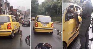 Perro persigue al taxi donde su dueña huía después de abandonarlo